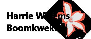 Boomkwekerij Rhododendrons Eindhoven - Harrie Willems Boomkwekerij